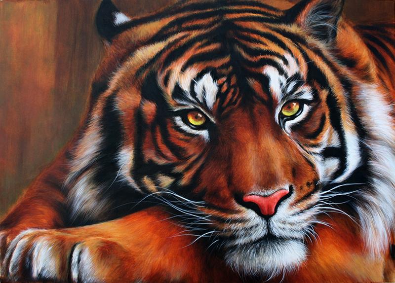 Tigris portré festmény